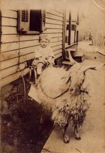 Ralph Haley, circa 1916
