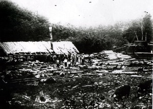 Lincoln County Sawmill, 1895-1920
