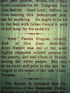 Fannie Dingess obituary, Logan County Banner, May 15, 1902