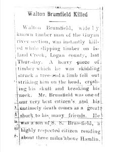 """Walton Brumfield Killed,"" Lincoln Monitor (Hamlin, WV), Thursday, March 19, 1914"