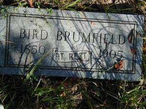 William Bird Brumfield grave, Fry Cemetery, Green Shoal, Lincoln County, WV, 2002