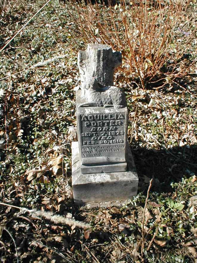 Acquillia Runyon Porter grave at the Williamson Cemetery, Milo, Martin County, KY.