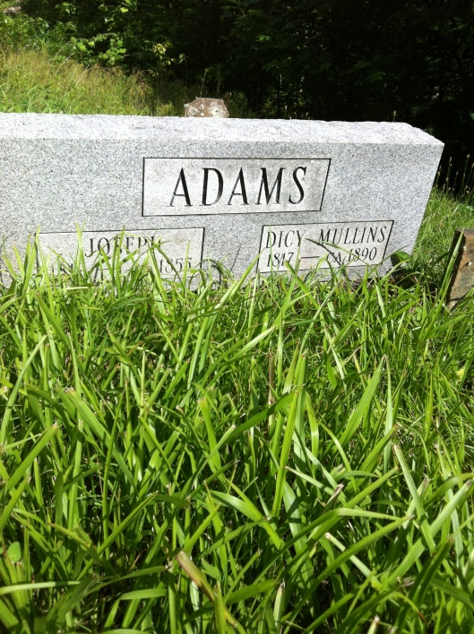 Joseph and Dicy Adams grave