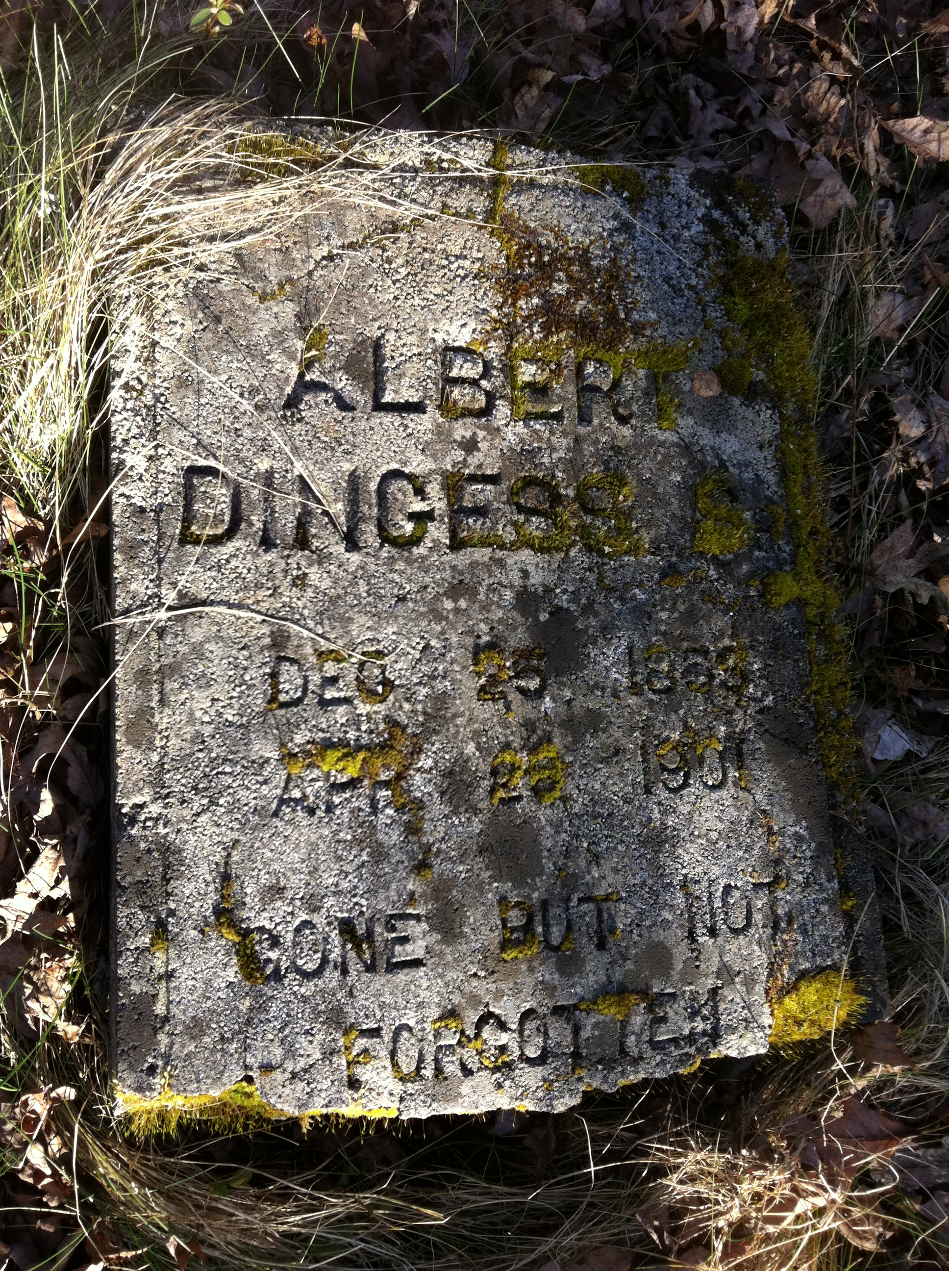 Albert Dingess Grave 1