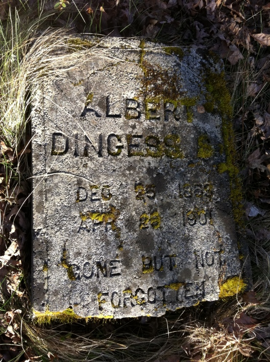 Albert Dingess Grave 1