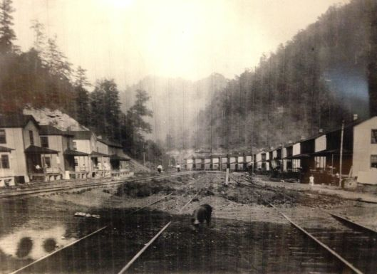 Camp Bellow No. 5 Mine 4.JPG